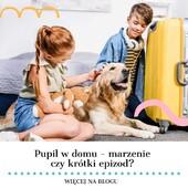 Jakie jest Wasze podejście do tego tematu?❓Jakie macie sposoby kiedy dzieci marzą o zwierzaku, a w domu nie ma do tego warunków?❓Po radę warto zajrzeć na naszego bloga 😊Link poniżej 👉 www.kocotkids.com/blog/porady/zwierzak-w-domu-co-zrobic-gdy-dziecko-o-nim-zamarzy__________________________________________#edukacja #edukacjadzieci #blogrodzinny #blogdlarodzicow #pets #zwierzęta #zwierzewdomu #edukacjatopodstawa #parents #rodzicembyć #naszedzieci #dzieciaki #forkids #bestforkids #najlepszedladzieci #kocotkids #kidshome #kidshomedecor #happykids #szczesliwedziecko❤️