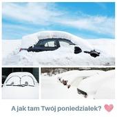 Dzień dobry ❤️   Czy wasz poniedziałek również jest pełen niespodzianek?🤔  Pora zamienić auto na sanki 😈😍  A w międzyczasie wpadnij do nas do sklepu, nasze produkty zaskoczą Cię, niczym zima kierowców 👇  ✴️www.kocotkids.com✴️  . . . . . #kocotkids #instakids #opole #polskiemeble #mebledladzieci #dzieciecypokój #wystrójwnętrz #pokojdziecięcy #łóżko #bed #kidsbed #forkids #furniture #kidsroomdesign #babygirl #kidsdecor #babylove #babyboy #wyposażeniepokojudziecięcego #swiatdziecka #2021 #mebledziecięce